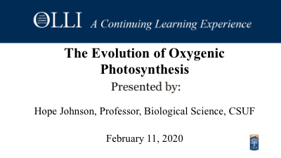 Click here to view Oxygenic Photosynthesis video.